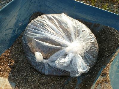 土を袋に入れて太陽光で消毒する画像
