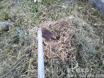 雑草堆肥の作り方画像